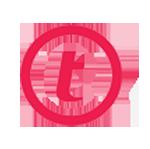 thawte logo copy
