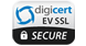 digicert ev trust seal