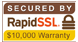 rapidssl trust seal copy