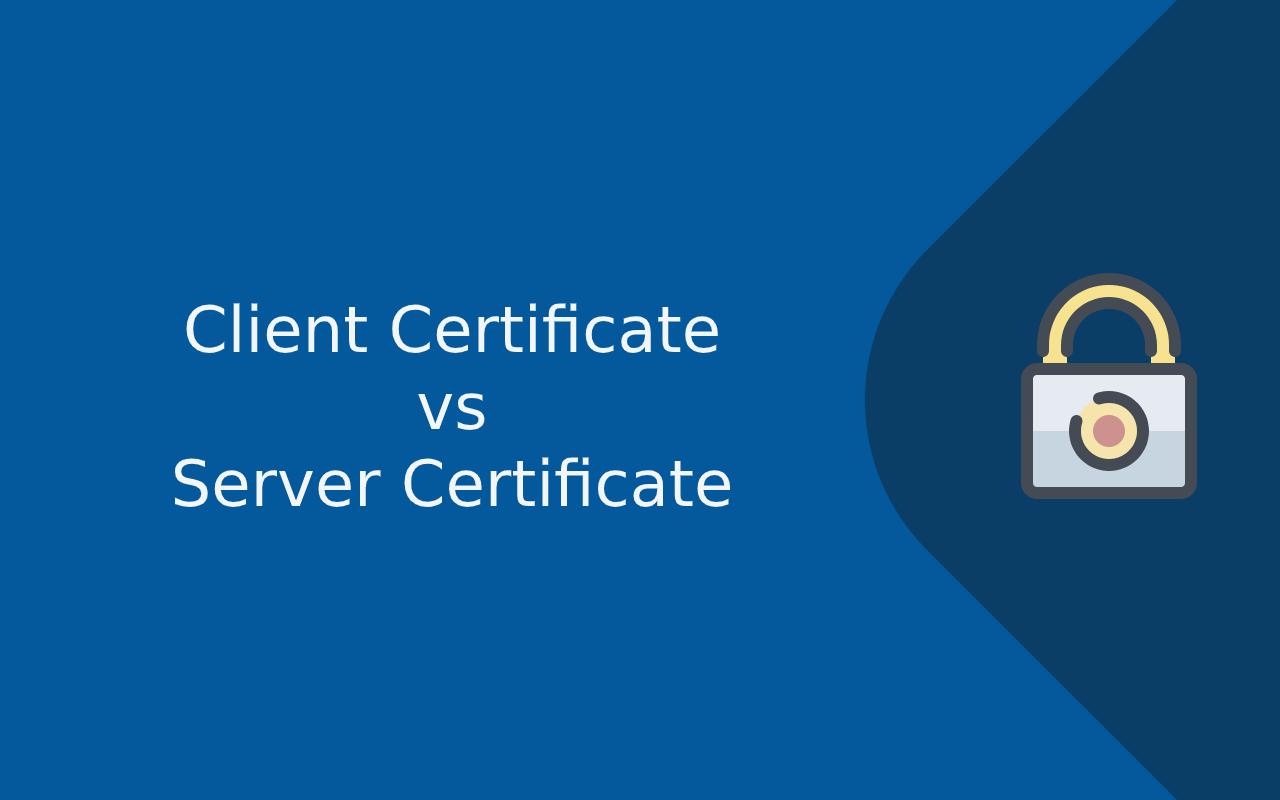 Client certificate vs server certificate
